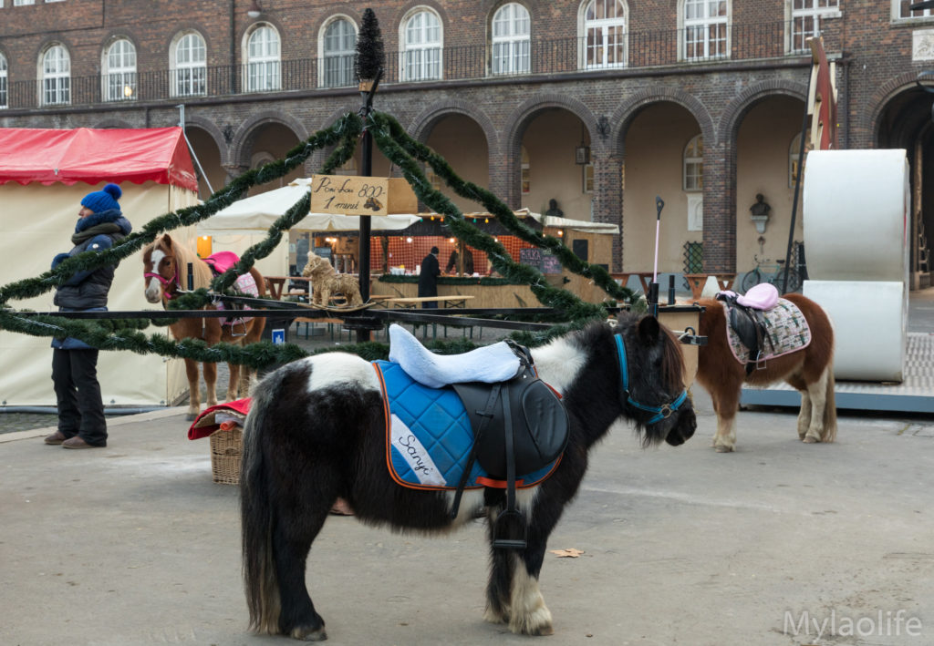 Szeged Christmas markets Hungary Dom Ter pony rides a life without borders