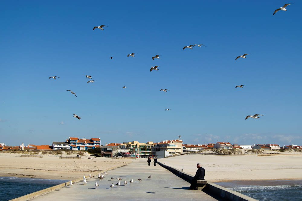 things to do in aveiro portugal